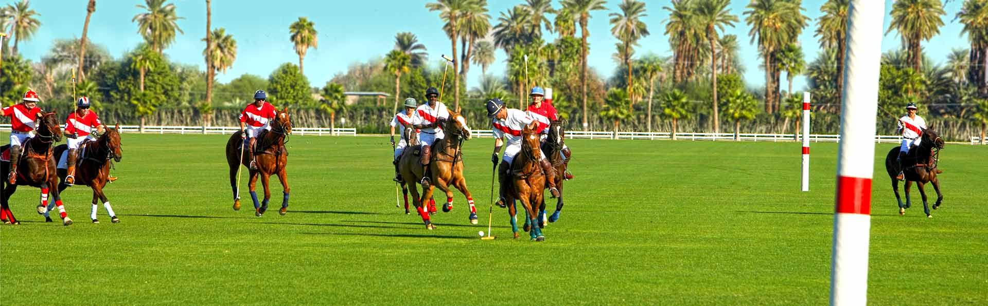 Polo Game in Lakewood Ranch